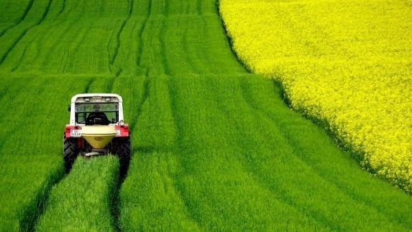traktor, pole